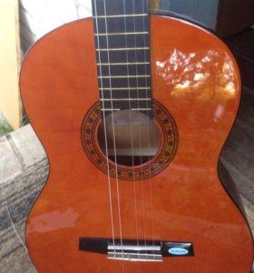 Гитара Валенсия cg 160