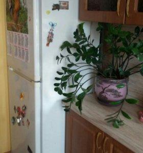 Продам большой двухкамерный холодильник