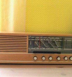 radiola krinnett