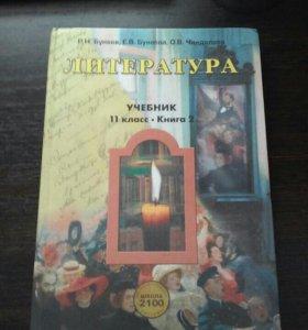 Учебник по литературе 11 класс, две части