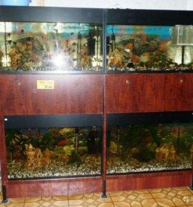 Стойка для аквариумов