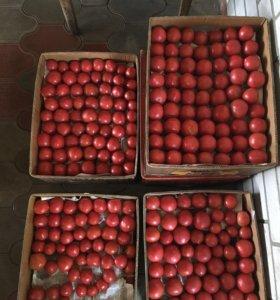 Помидоры розовые на закрутку,томат.