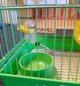 Клетка для мышей, хомчков и т.п.