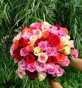 Букет из роз (49 шт)