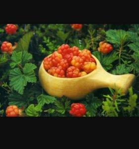 Моршка - полезная ягода для всего организма!