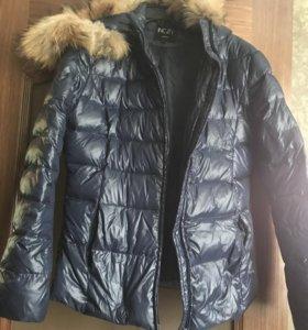 Куртки ,шарф
