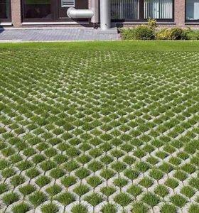 Тротуарная плитка Газонная решетка (ЭКО решетка)