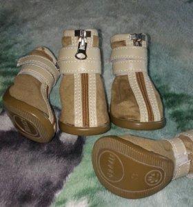 Замшевые ботиночки для вашего питомца