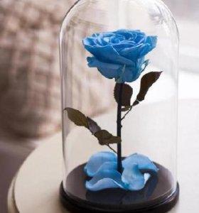 роза в стеклянной колбе на подставке