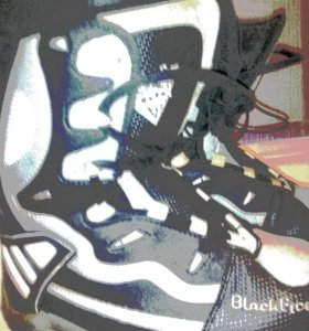 Ботинки для сноуборда Black Fire