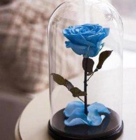 Долговечная роза в стеклянной колбе на подставке