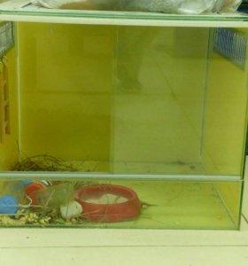 Аквариумы д/грызунов и птиц