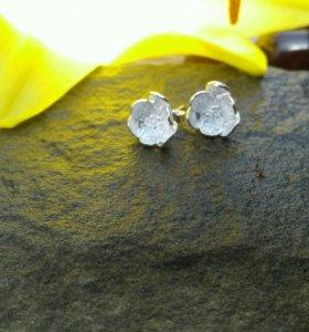 Серебрянные серьги гвоздики