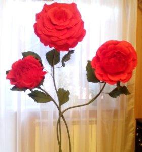 Ростовые розы.