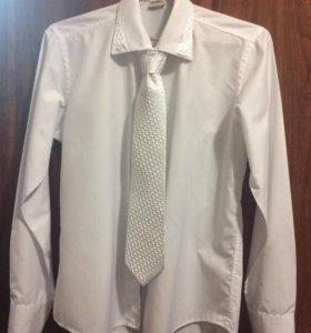 Новая белая рубашка с галстуком