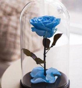 роза в стеклянной колбе на подставке из дерева