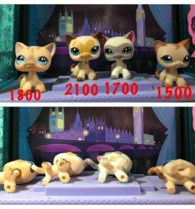 Кошки (стоячки) Pet Shop на Новый год