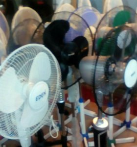 Вентиляторы напольные
