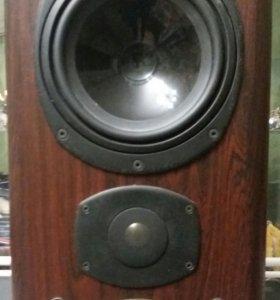 Tannoy D20 -632 Rosewood Полочная тыловая акустика