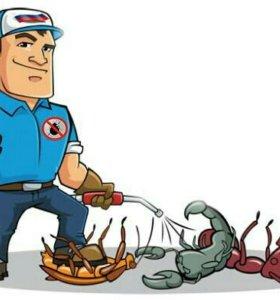Уничтожение клопов, клещей и прочих насекомых