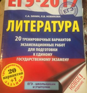 Подготовка к ЕГЭ по литературе