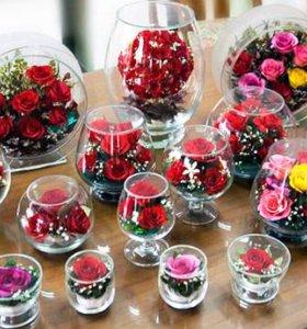 Цветы в стекле (вакууме) ОПТ и розница