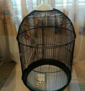 Клетка для попугая + корм