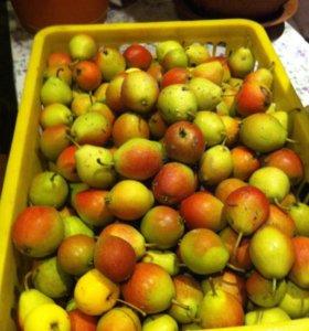 Яблочки и груша