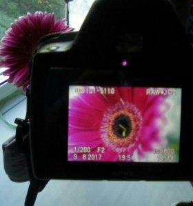 Зеркальный фотоаппарат Sony Alpha 290