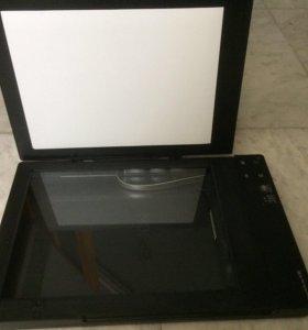 Сканер Epson v33