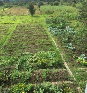 Участок, 10 сот., сельхоз (снт или днп)