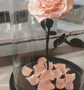 Многолетная роза в прозрачной колбе на подставке