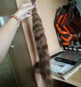 Натуральный волос в срезе