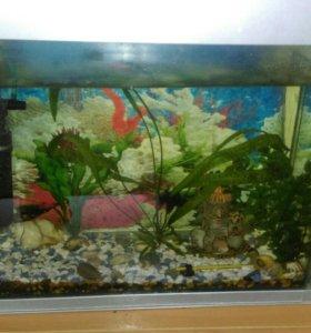 Продам аквариум возможен торг
