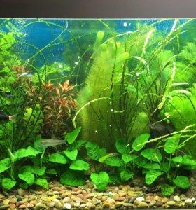 Грунт для аквариума 3-5 мм
