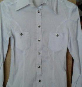 Блузки для девочки 4-6 кл 164 см