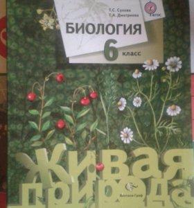 Учебник. Биология 6 класс