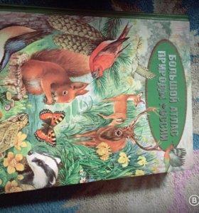 Продам познавательную книгу для детей