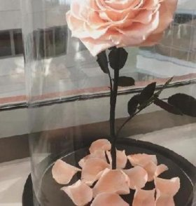 роза в прозрачной колбе на подставке