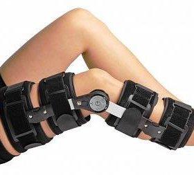 Отрез коленного сустава