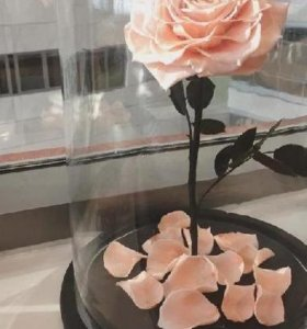 роза в стеклянной колбе на деревянной подставке