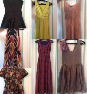 Платья вечерние и коктельные, длинные и короткие