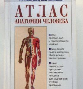 Книга Атлас анатомии человека Самусев, Липченко