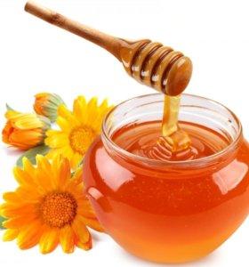 Мёд из разнотравия