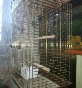 Большая клетка для попугая