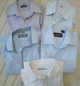 Рубашки. Р158-164