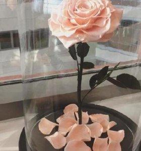 роза в прозрачной колбе на подставке из дерева