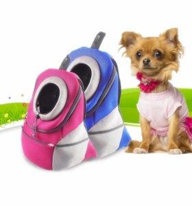 Рюкзак для собачки