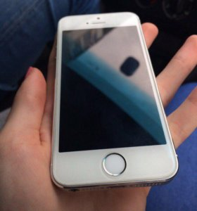 iPhone 5s / Silver / 16GB
