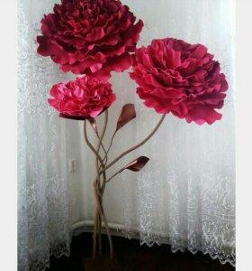Цветы моющие